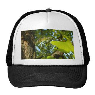 Crystal Ball in Gingko tree Cap