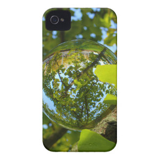 Crystal Ball in Gingko tree iPhone 4 Cover
