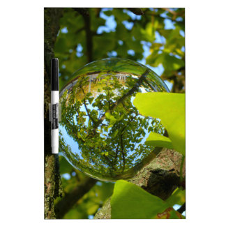 Crystal Ball in Gingko tree Dry Erase Boards