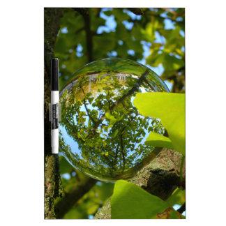 Crystal Ball in Gingko tree Dry-Erase Whiteboard