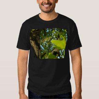 Crystal Ball in Gingko tree T Shirt