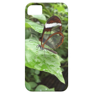 Crystal Butterfly iPhone 5 Case