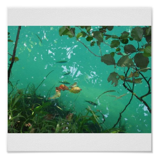 Crystal clear green river print