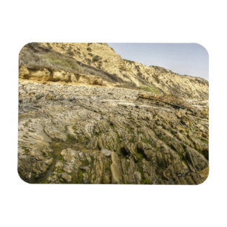Crystal Cove Rectangular Magnets