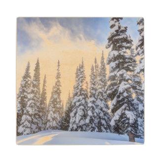Crystal Mountain Ski Resort, near Mt. Rainier 1 Maple Wood Coaster