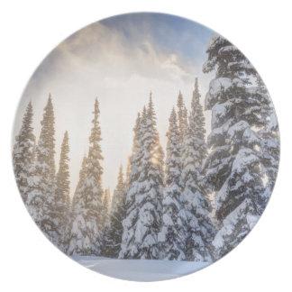 Crystal Mountain Ski Resort, near Mt. Rainier 1 Plate