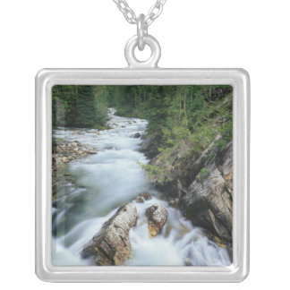Crystal River, Gunnison National Forest, Pendant