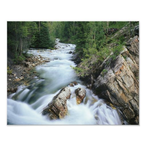 Crystal River, Gunnison National Forest, Photographic Print