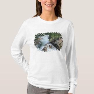 Crystal River, Gunnison National Forest, T-Shirt