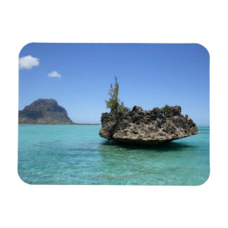 Crystal rock composed of coral rectangular photo magnet