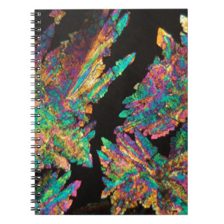 Crystals of Diclofenac under the microscope. Notebooks