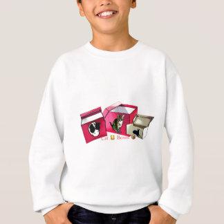 CT Boxes Sweatshirt