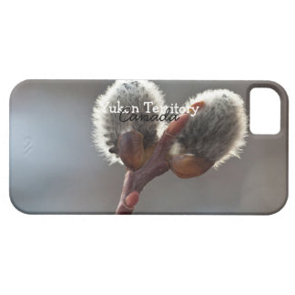CTW Catkin Twins Barely There iPhone 5 Case
