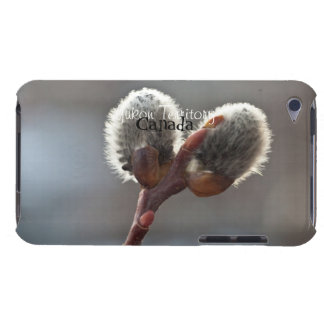 CTW Catkin Twins iPod Touch Cases