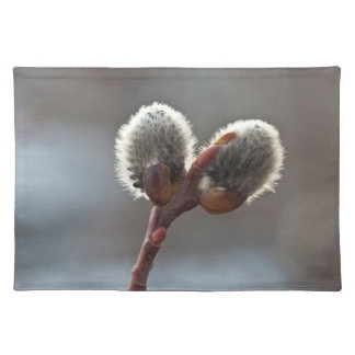 CTW Catkin Twins Placemats