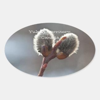 CTW Catkin Twins Oval Sticker