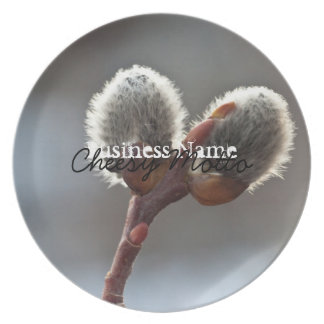 CTW Catkin Twins Dinner Plate
