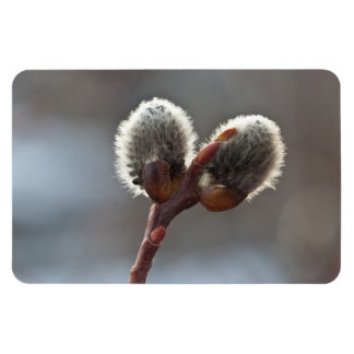 CTW Catkin Twins Flexible Magnets
