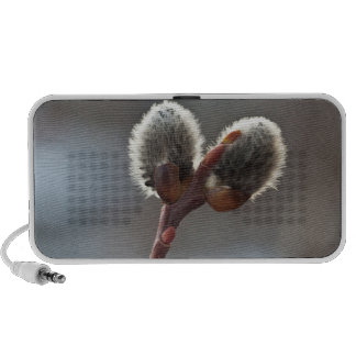 CTW Catkin Twins Portable Speaker