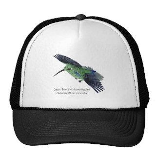 Cuban Emerald Hummingbird with Name Hats