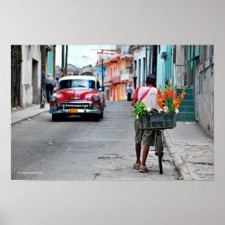 Cuban Florist Poster