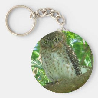 Cuban Pygmy-owl Keychains