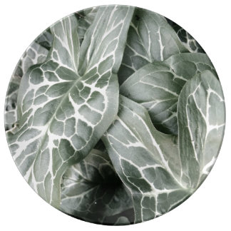 Cuckoo Pint Leaves In Black And White Porcelain Plate