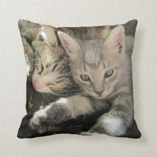 Cuddle Cute Kittens Throw Pillow