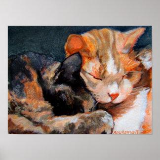 Cuddling Kittens Poster