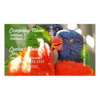 Cuddling Lorikeets Business Cards