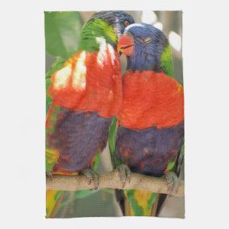 Cuddling Lorikeets Kitchen Towel