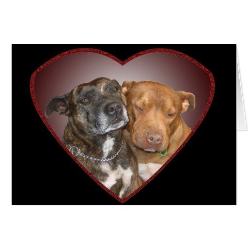 Cuddling Staffy Heart  Blank Cards