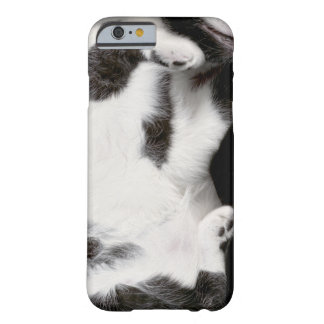 Cuddly Cat Wrapper for iPhone 6 Case (blk&wht) Barely There iPhone 6 Case