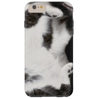 Cuddly Cat Wrapper for iPhone 6Plus Case (blk&wht) Tough iPhone 6 Plus Case