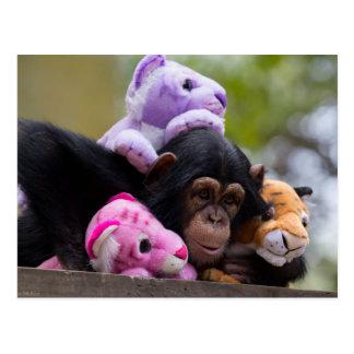 Cuddly Chimp & Friends Postcard