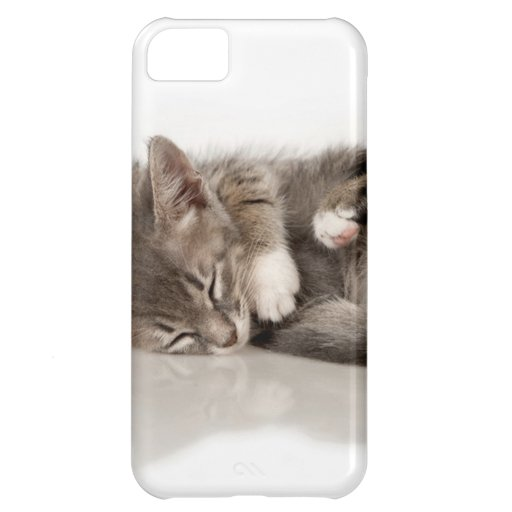 cuddly kittens case for iPhone 5C
