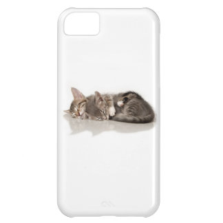 cuddly kittens iPhone 5C case