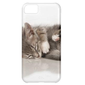 cuddly kittens iPhone 5C case