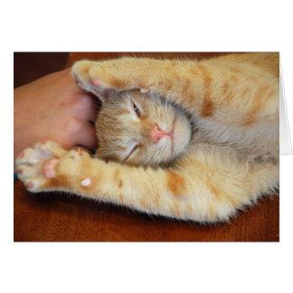 Cuddly Kitty Card