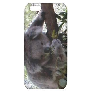 Cuddly Koala Case For iPhone 5C