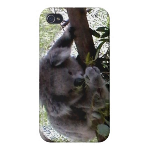 Cuddly Koala Cases For iPhone 4