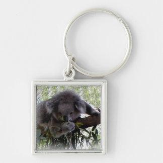 Cuddly Koala Silver-Colored Square Key Ring