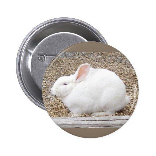 Cuddly White Bunny 6 Cm Round Badge