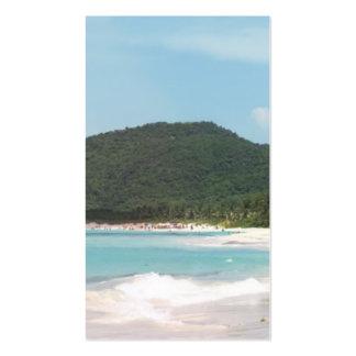 Culebra's Flamenco Beach Puerto Rico Business Card