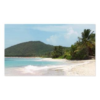 Culebra's Flamenco Beach Puerto Rico Business Cards