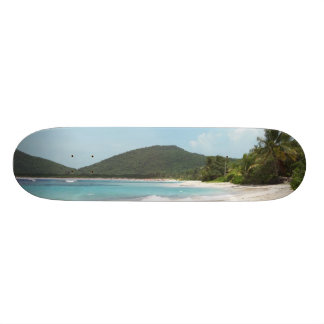 Culebra's Flamenco Beach Puerto Rico Custom Skateboard