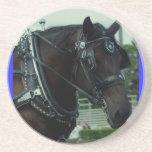 culpeper va draught   horse show