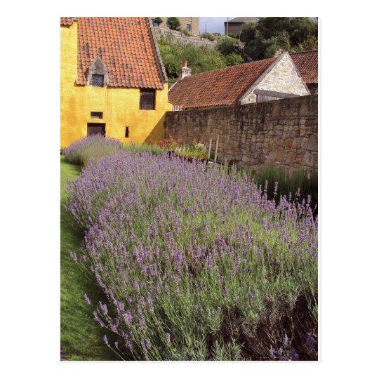 Culross Palace - The Front Garden Postcard