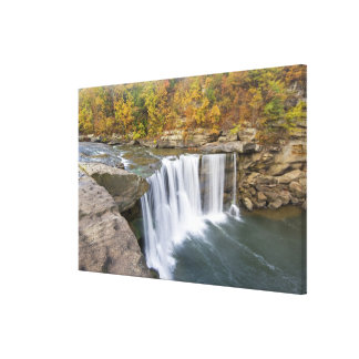 Cumberland Falls State Park near Corbin Kentucky Stretched Canvas Print