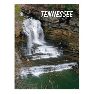 Cummins Waterfall Postcard
